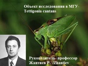 справочник домашних адресов москвы